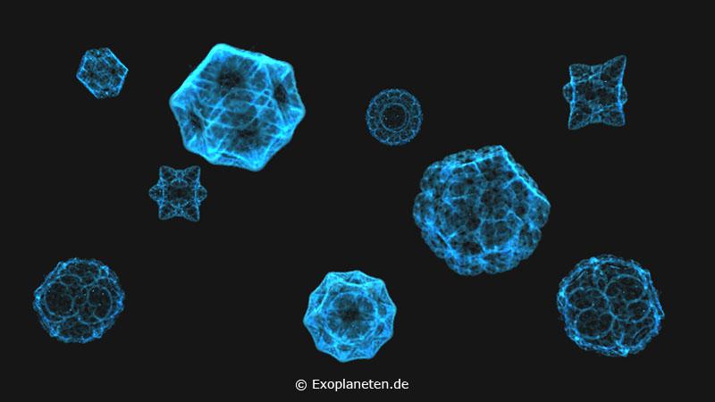 Fraktale als Diatomeen