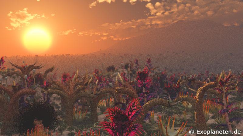 Leben unter einer roten Sonne